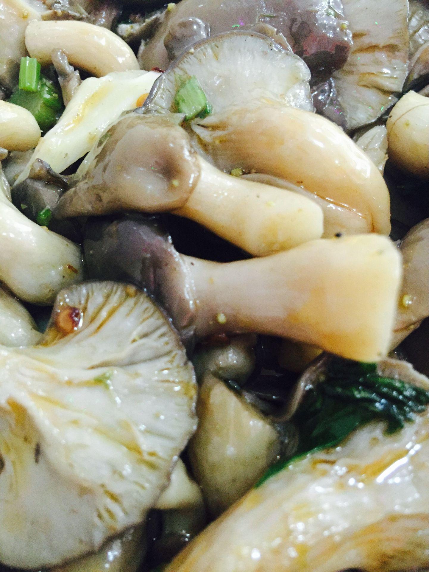 凉拌鲜菇培训